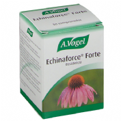 A VOGEL echinaforce forte (30 comprimidos)