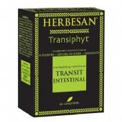 HERBESAN TRANSITO INTESTINAL 60 COMP
